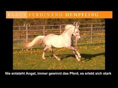 Hempfling - Hengst vs. Schubkarre Horse Videos, Horses, Animals, Wheelbarrow, Pictures, Animales, Animaux, Animal, Animais