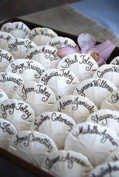 sand dollar placecards. too cute! perfect for LBI wedding?
