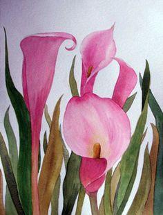 Calla Lilies, Galería Floral, N Pickup, Galerías de AEA Miembros Profesionales