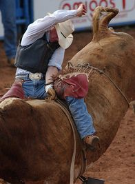 Oklahoma rodeos - thrilling action and plenty of Wranglers!
