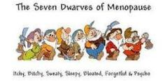 The Seven Dwarfs of Menopause: Itchy Bitchy Sweaty Sleepy Bloated Forgetful and Psycho 7 Dwarfs, Seven Dwarfs, Reiki, Menopause Humor, Menopause Symptoms, Menopause Relief, Early Menopause, Menopause Signs, Post Menopause