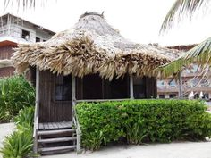 Captain Morgan's Retreat in Ambergris Caye, Belize - Lonely Planet
