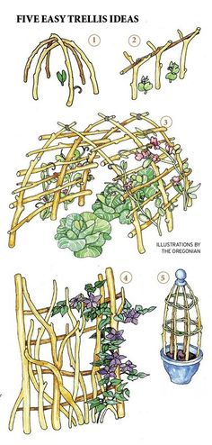 Garden structures A trellis whether simple or elaborate can play many roles is part of Vegetable garden Trellis - Position a large trellis on the west so it will cast a shadow to cool a sitting area that bakes in the afternoon Garden Crafts, Garden Projects, Jardin Decor, Garden Trellis, Wisteria Trellis, Diy Trellis, Herbs Garden, My Secret Garden, Edible Garden