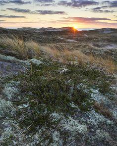 Dünen im Winter Celestial, Mountains, Sunset, Winter, Nature, Travel, Outdoor, North Sea, Landscape