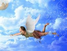 Flying faires - Bing Images