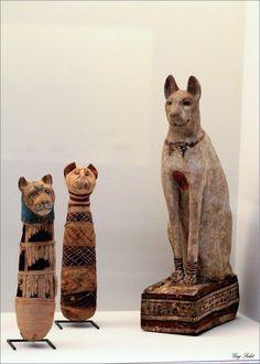 Momies de chat EGYPTE LOUVRE