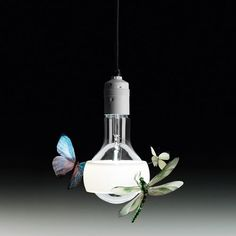 Dream On lighting for a kids room with butterflies and dragon flies. Johnny B. Butterfly Pendant Light $3210