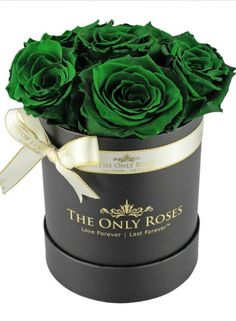 Our small round rose hat box takes our signature arrangement and makes it even more stunning with a tall, sturdy box that shows off our preserved roses. Then we tie it all together with a ribbon and bow for a final touch of elegance. Beautiful Flower Designs, Beautiful Rose Flowers, Roses Only, Best Wallpaper Hd, Rose Hat, Preserved Roses, Green Rose, Happy Wednesday, Flower Boxes