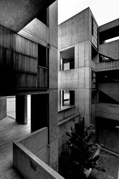 Salk Institute    Architect: Louis Kahn (1965)  Location: San DIego (La Jolla), CA