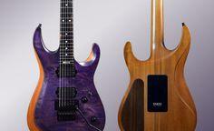 Berry at Guitars-Shop.DE Guitar Shop, Guitars, Berry, Shopping, Blueberries, Guitar, Vintage Guitars