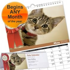 Personalised Cats Calendar  from Personalised Gifts Shop - ONLY £9.99