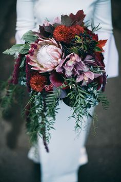 Wedding Bouquet Winter wedding bouquet idea - burgundy and greenery bouquet - king protea bouquet {Leo Farrell] - For wedding flowers that really pop, look no further than these stunning and unique king protea bouquets. Wedding Flower Guide, Cheap Wedding Flowers, Winter Wedding Flowers, Bridal Flowers, Flower Bouquet Wedding, Wedding Colors, Winter Weddings, Bridal Bouquets, Flower Bouquets