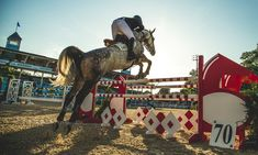 Why Go To The Devon Horse Show - Caracol - Inspired Jewelry and Handbags