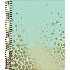 Gold Foil Confetti Mint Spiral Notebook