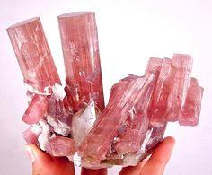Tourmaline with Lepidolite and Quartz -  Himalaya Mine, San Diego County, California, USA
