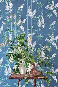 Lovely Wisteria Cole & Sons in the Powder Blue and Jade colourway.