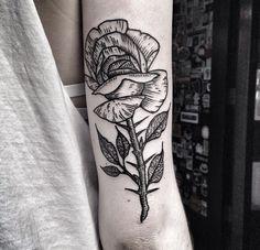 Woodcut Rose | Kolahari