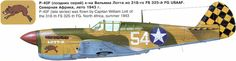 P-40F 325th FG