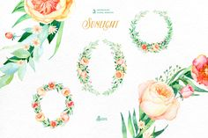 Sunlight. Floral Collection - Illustrations - 4