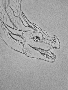 Animal Drawings, Cool Drawings, Drawing Sketches, Dragon Drawings, Dragon Anatomy, Fire Drawing, Wings Of Fire Dragons, Dragon Sketch, Fire Art