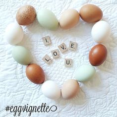 ❤Tomorrow is Thursday,  so you know what that means!  It's time for #eggvignette! We will continue the Valentine theme for this new week!  So get those beautiful egg pics ready! Here's how to play! ❤ 1. Post your pic and mention that you are playing along with @happydaysfarm IN your description.  2. Tag @happydaysfarm ON your pic. 3. Type #eggvignette IN your description. ❤Please include ALL three for a chance to be featured in a collage on Monday! Post anytime, Thursday through Sunday!❤…