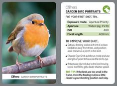 44 tips cards for photographers to cut out and keep or browse on your phone! Photography Settings, Photography Pics, Photography Editing, Aerial Photography, Scenic Photography, Photography Cheat Sheets, Landscape Photography Tips, Landscape Photos, Digital Camera Magazine