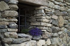 Levendula virágzás és szüret 2015 Provence, Shabby Chic, Windows, Wood, French, Woodwind Instrument, French People, Timber Wood, French Language