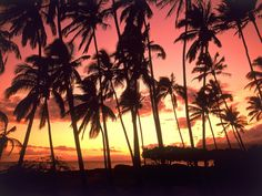 Tropical Beaches of every Island in the world.
