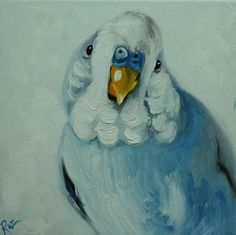 Bird painting 240 parakeet 12x12 inch portrait original oil painting by Roz