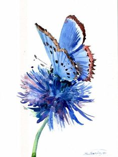 Blue Butterfly And Blue Flower by Suren Nersisyan - Beautiful! - Blue Butterfly And Blue Flower by Suren Nersisyan Butterfly Painting - Blue Butterfly And Blue Flower by Suren Nersisyan Butterfly Painting, Butterfly Watercolor, Butterfly Art, Tattoo Watercolor, Butterfly Tattoos, Watercolor Ideas, Rose Watercolour, Purple Butterfly, Art Papillon