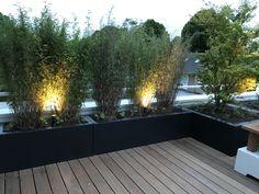 Diversen polyester plantenbakken gebruikt in een tuinontwerp door Peter Hoek tuinontwerp & aanleg