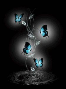 descargar imagnes para whatsapp en movimiento mariposas