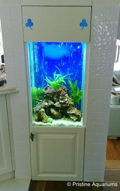 Small-aquarium-in-wall