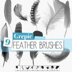 Photoshop brush: Feather Photoshop Brushes