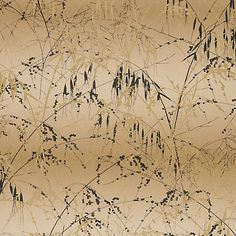 Meadow Grass wallpaper – gold / bronze - Clarissa Hulse for Harlequin
