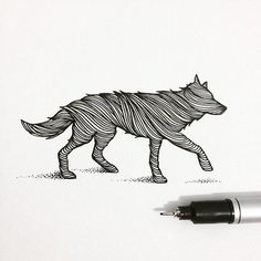 'WOLF', sketch of the day ✏️