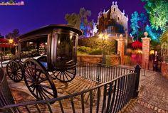 Walt Disney World disney
