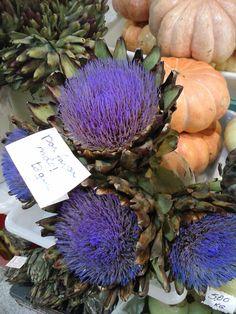 Flores de Alcachofra - Mercado Municipal de Curitiba