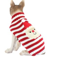 b8972f05dc62 94 Best Dog Apparel   Accessories images in 2019