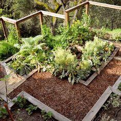 Vegetable Garden Fence Design terraced