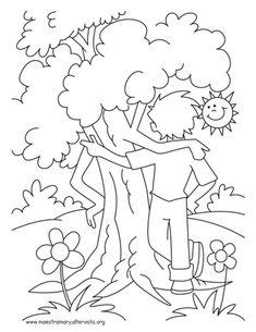 disegni alberi