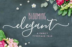 Introducing the new and ever-so-lovely Blooming Elegant Font Trio…a delightful little Font-family with an elegant yet playful nature. Blooming Elegant consists of three fonts designed to