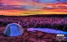 Butler Wash in Southeast Utah. Photographer: