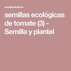 semillas ecológicas de tomate (3) - Semilla y plantel