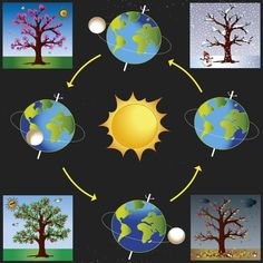 Graphic of four seasons : ☀️🌸 Spring, 🌞🍎 Summer, ⛈🍁 Autumn~Fall, 🌨☃️Winter Science Projects For Kids, Science Activities For Kids, Preschool Science, Montessori Activities, Science Experiments Kids, Science Classroom, Science Lessons, Science Education, Preschool Crafts