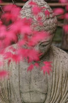 """""""I am determined to practice deep listening. I am determined to practice loving speech."""" ~ Thich Nhat Hanh"""