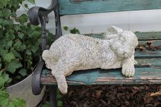 ~Bunny On A Bench~