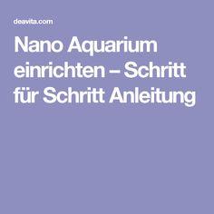 Nano Aquarium einrichten – Schritt für Schritt Anleitung