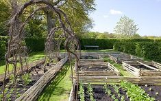 Veg-supreme: The vegetable patch with chestnut sheep hurdles and silver birch and hazel arches and tepees