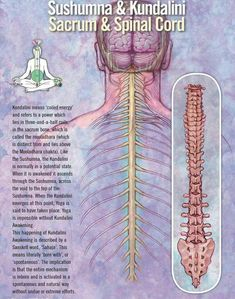 One technique that can offer this is called Zen meditation. Zen meditation is Sahaja Yoga Meditation, Chakra Meditation, Kundalini Yoga, Mindfulness Meditation, Chakra Healing, Qi Gong, Reiki, Dharma Yoga, Indian Philosophy